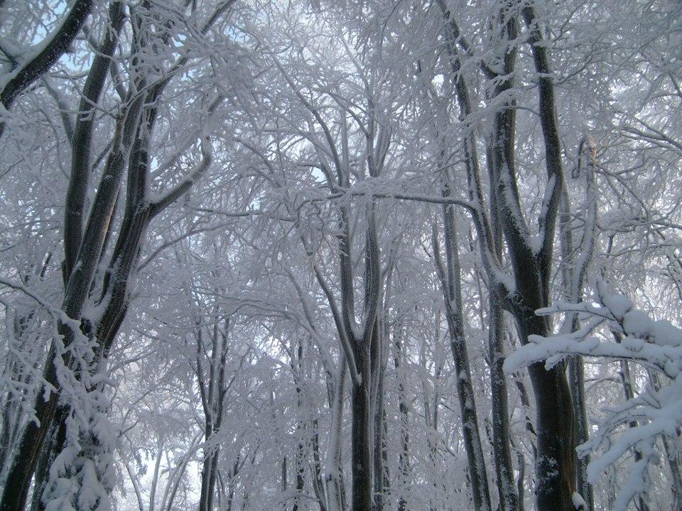 zimowa-bajka